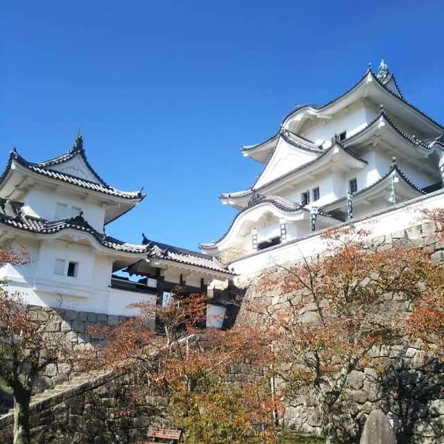 伊賀上野城紅葉