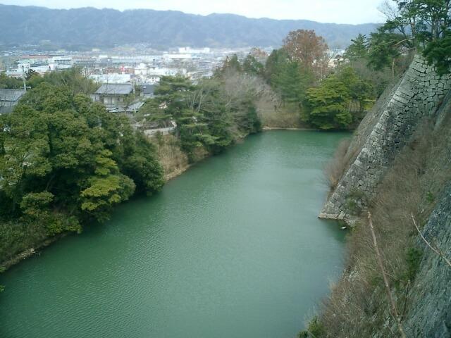 伊賀上野城高垣の下の池