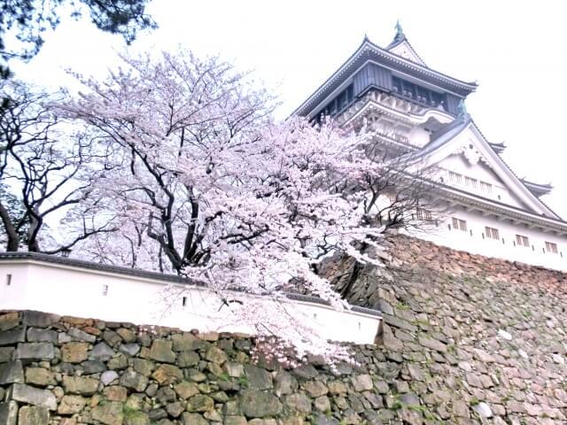 桜と小倉城